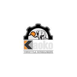 Kaoko Throttle Stabilizer - TRIUMPH Speed Triple 1